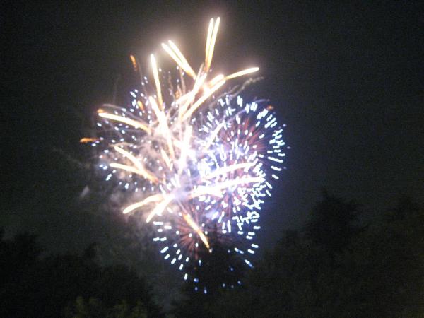 昭島市民くじら祭