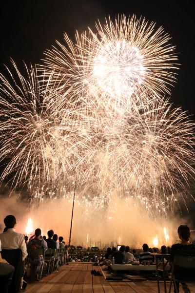 全国花火名人選抜競技大会ふくろい遠州の花火