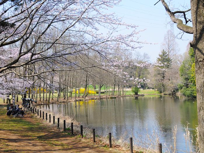 智光山公園(ちこうざんこうえん)