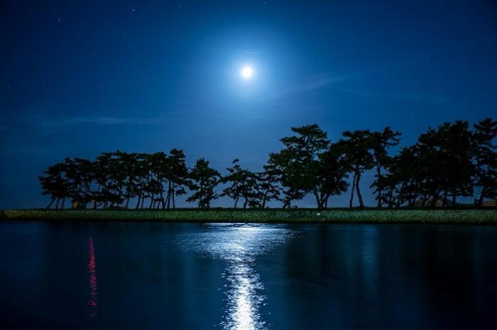 兵庫県立 高砂海浜公園  向島公園