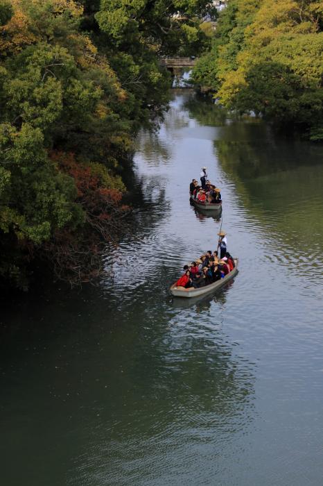 国指定名勝を巡る川下り・灯り船(夜の川下り)