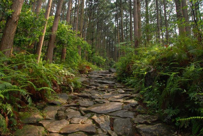 世界遺産熊野古道「馬越峠」