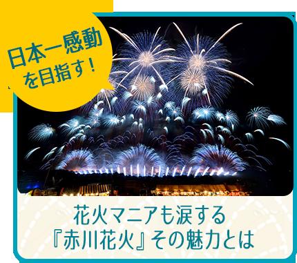 日本一感動を目指す! 花火マニアも涙する『赤川花火』その魅力とは